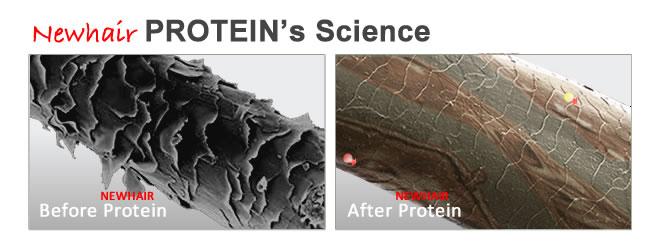 Brazilian Protein Science